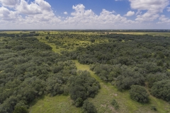 Foster Rd Ranch Aerial 2