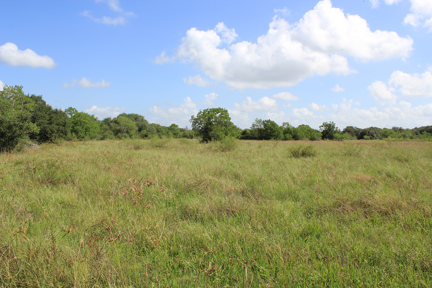 289 acres for sale