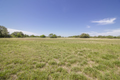 goliad-tract-4-pasture-3