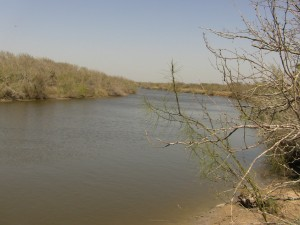 254 +/- Acres  Mission River