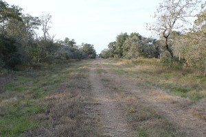 787 Acre Morales Ranch For Sale – Lavaca & Jackson County
