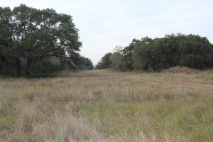 257 Acre Morales Ranch For Sale – Jackson & Lavaca County