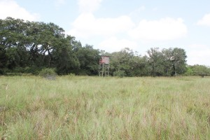 145 Acres For Sale – South Tract – Beck Rd Ranch