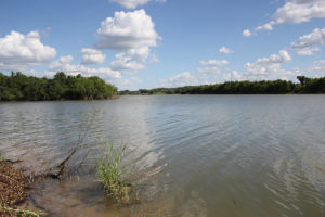 20 Acre Coleto Lake Property For Sale