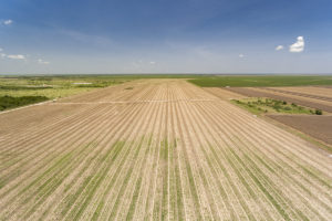 405 Acre Farmland For Sale – Sold!