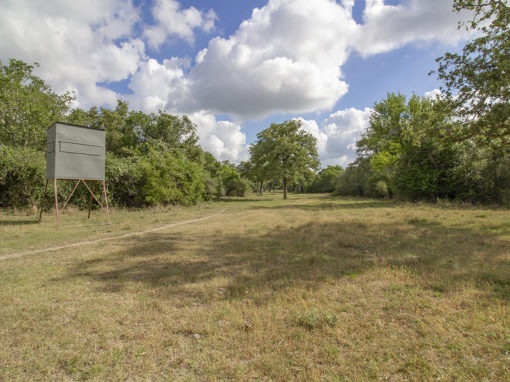 180+/- Acre Groll Ranch For Sale
