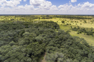 154+/- Acre Foster Rd Ranch For Sale
