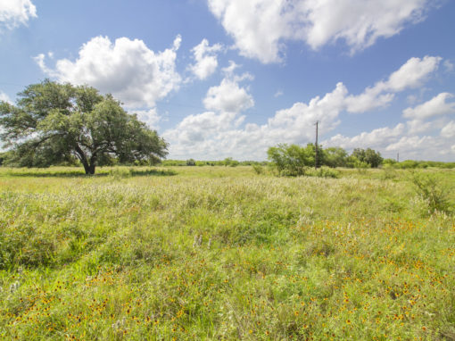 75+/- Acre San Antonio River Rd Ranch-SOLD