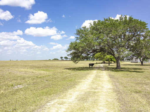 54+/- Acre Valle Fresco Ranch For Sale