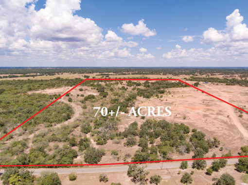 70+/- Acre Reinecke Road Ranch – REDUCED!