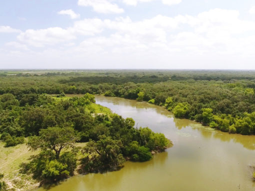 124+/- Acre Coleto Lake Property – UNDER CONTRACT