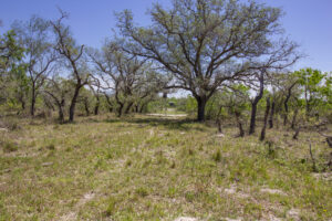 157+/- Acre Refugio Ranch-UNDER CONTRACT